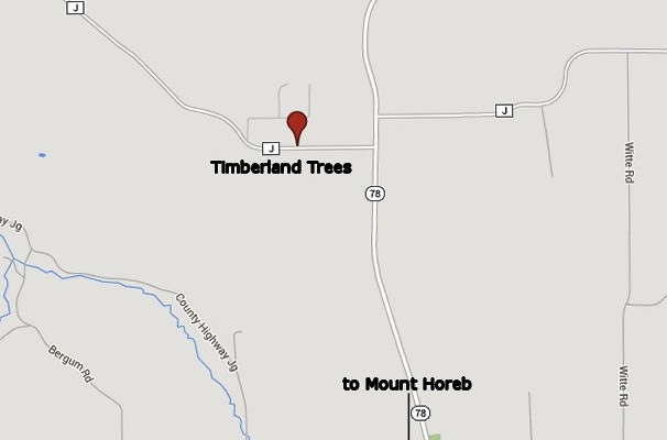 map to Timberland Trees